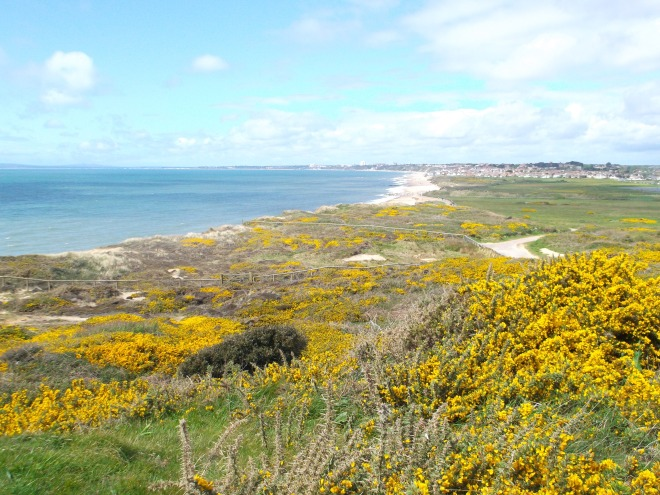 Climbing the Head, looking back to Bournemouuth. Are we in Cronulla or Avalon?